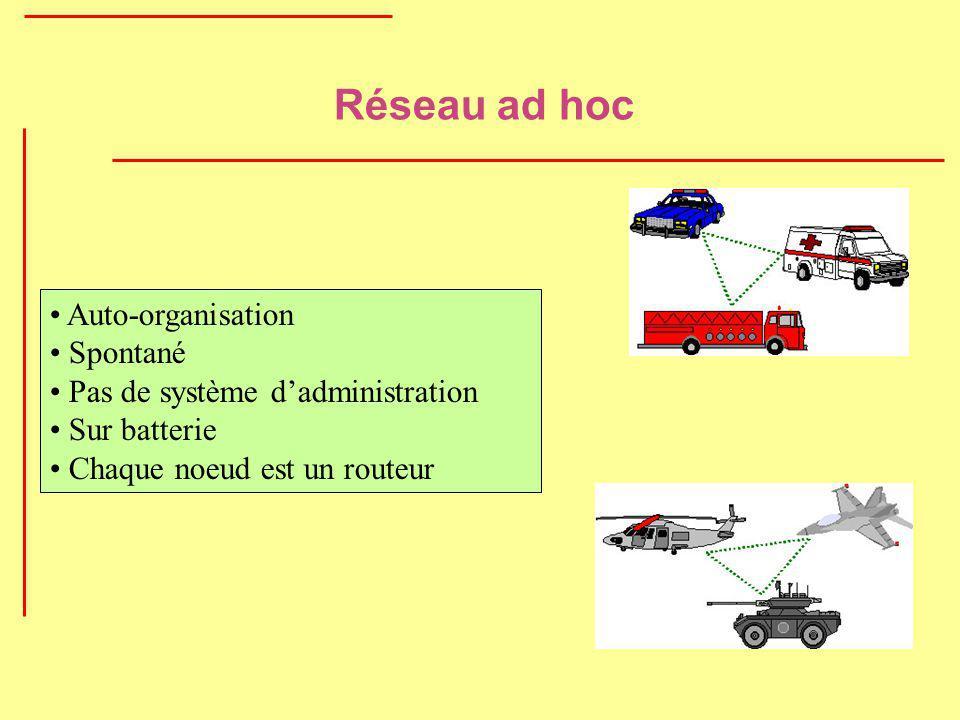 Réseau ad hoc Auto-organisation Spontané