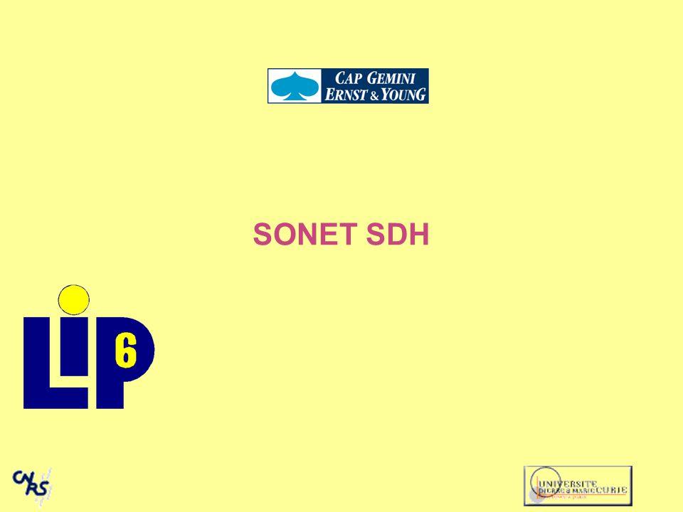 SONET SDH