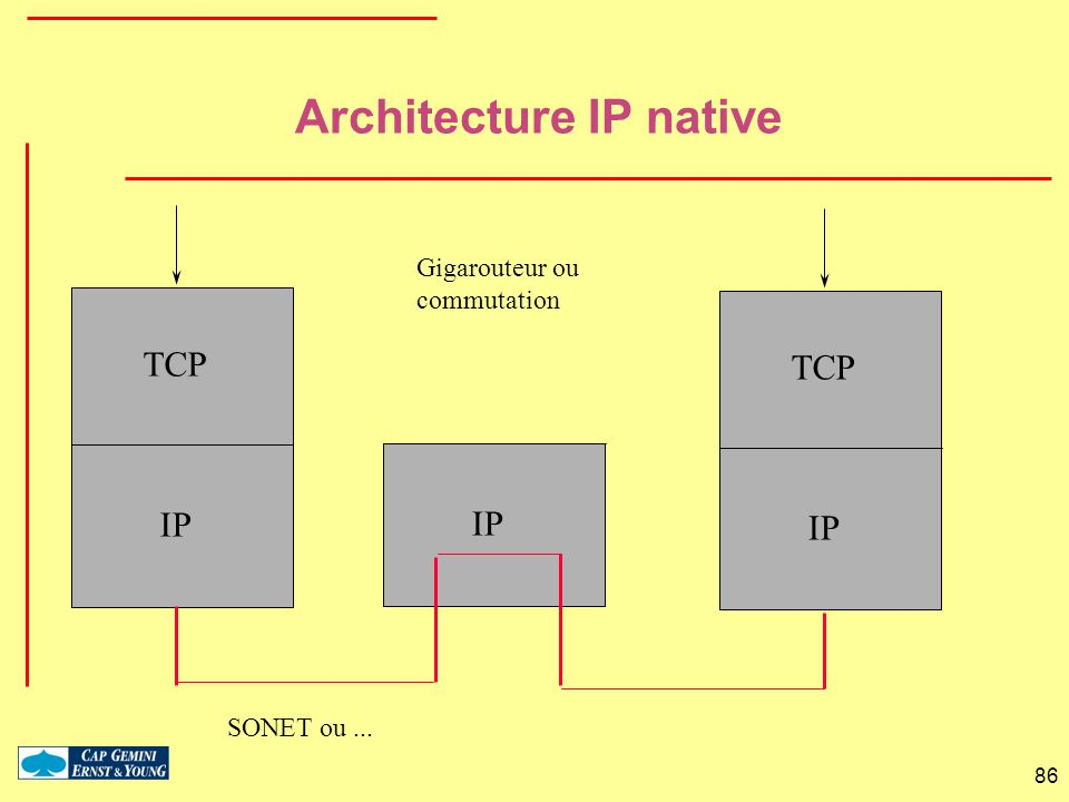 Architecture IP native