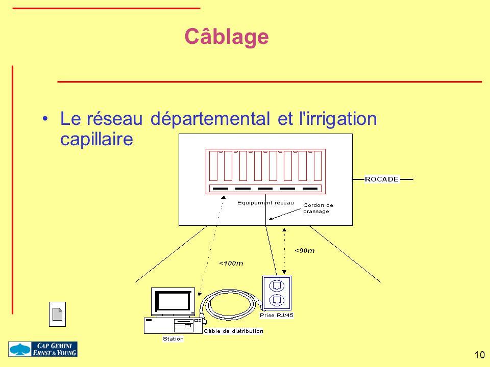 Câblage Le réseau départemental et l irrigation capillaire