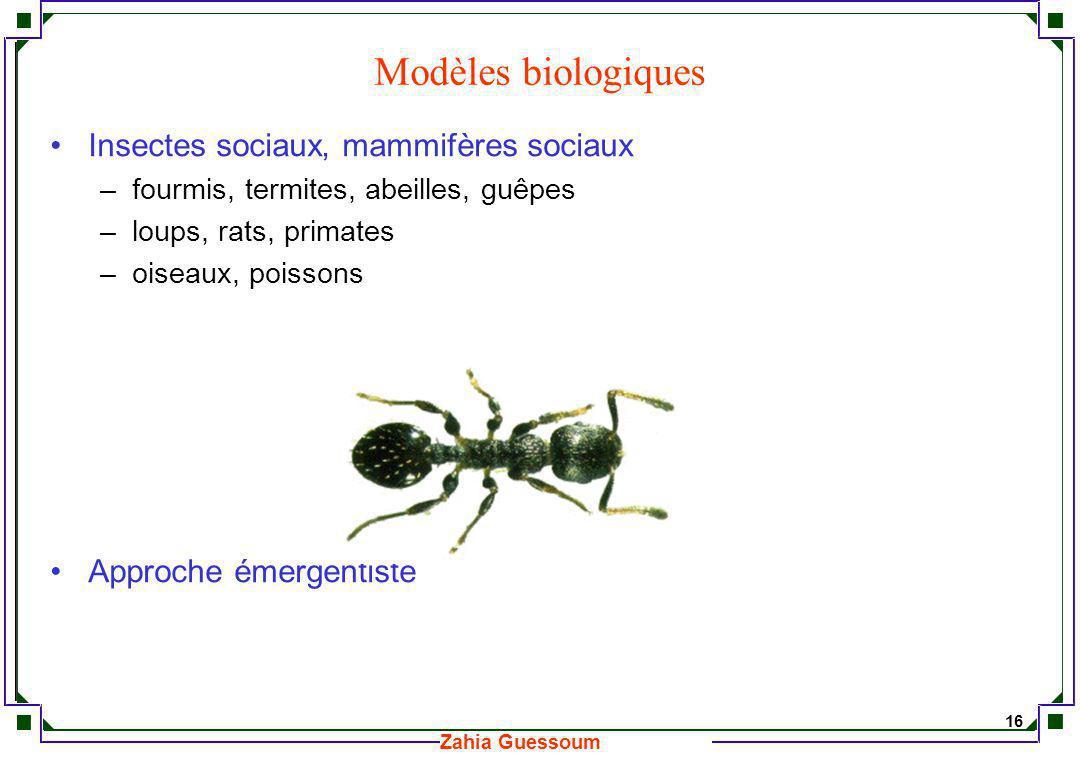 Modèles biologiques Insectes sociaux, mammifères sociaux