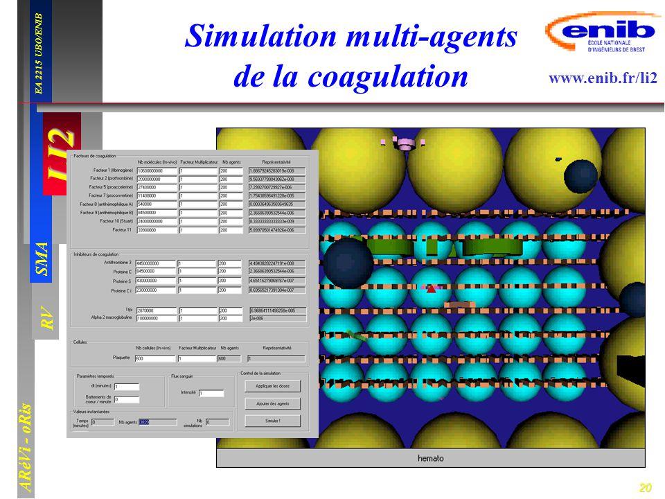 Simulation multi-agents