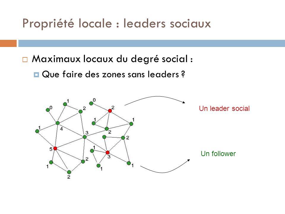 Propriété locale : leaders sociaux