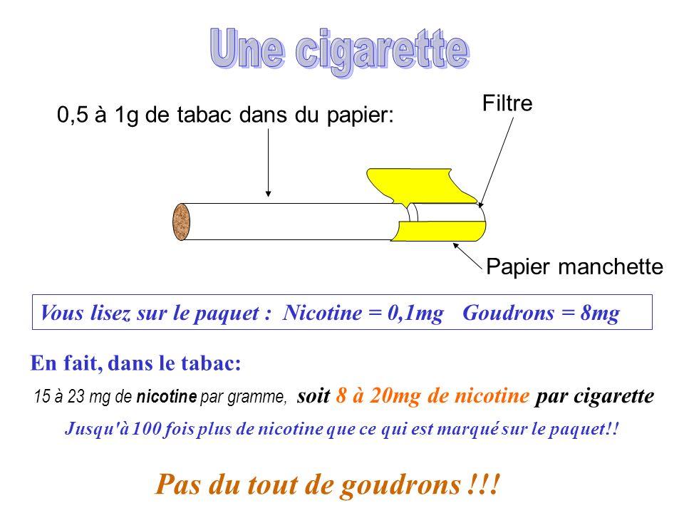 0,5 à 1g de tabac dans du papier: