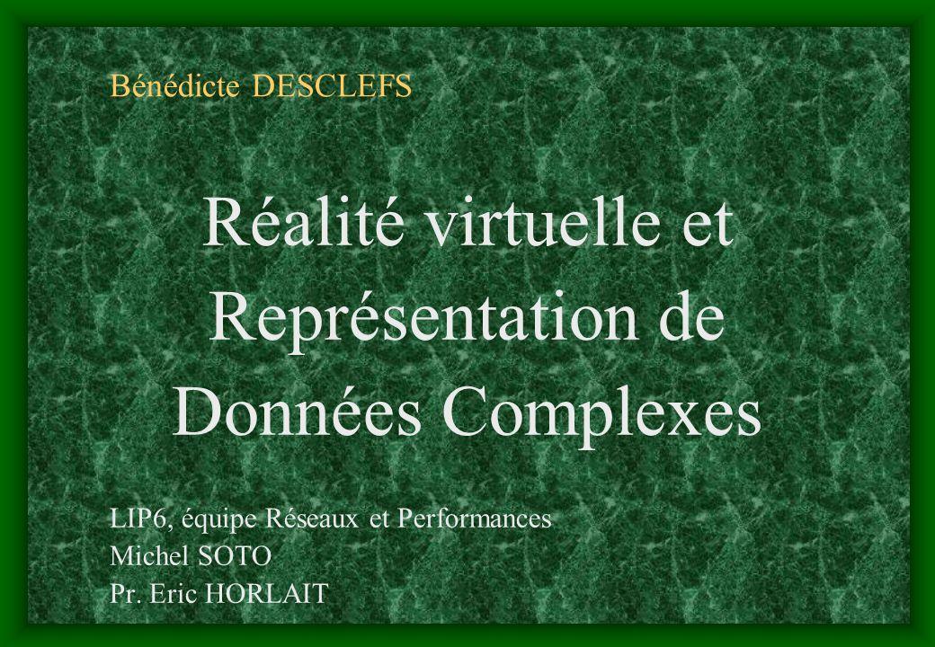 Réalité virtuelle et Représentation de Données Complexes
