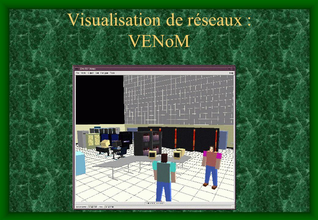 Visualisation de réseaux : VENoM