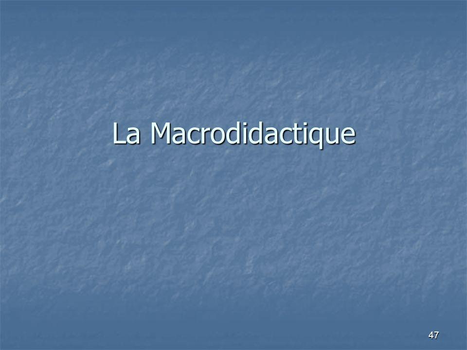 La Macrodidactique