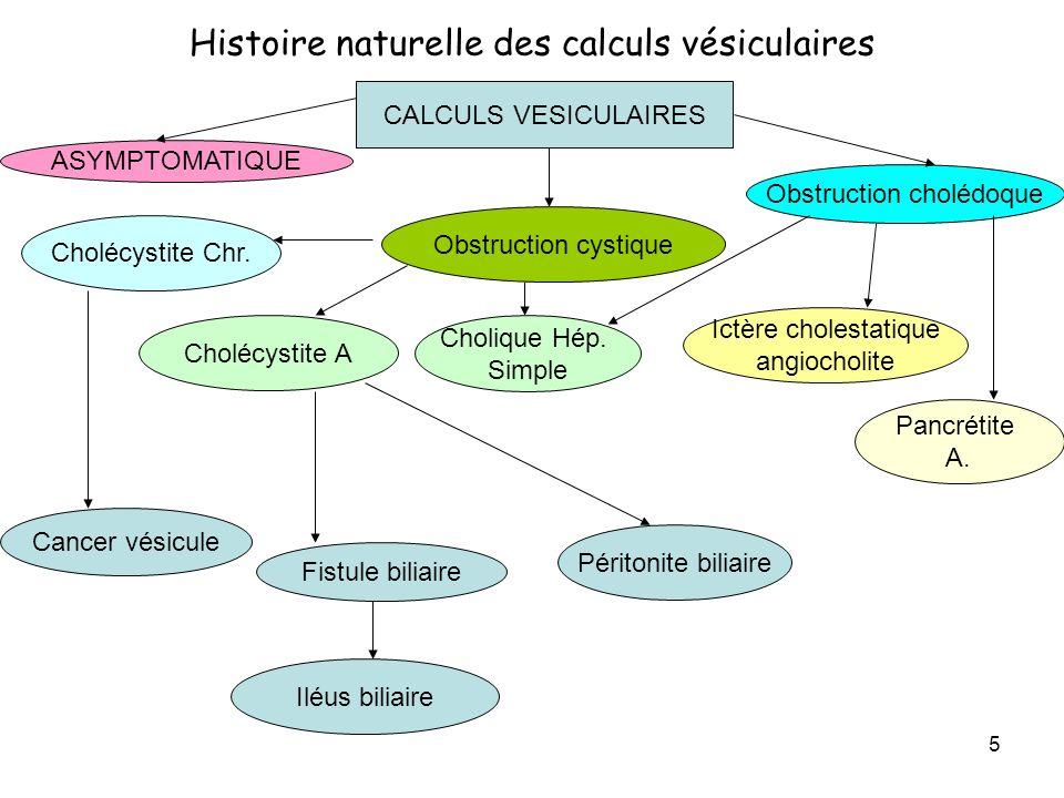 Histoire naturelle des calculs vésiculaires