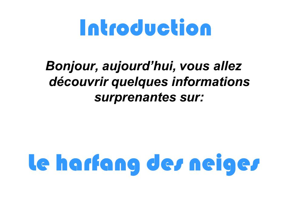 Introduction Le harfang des neiges