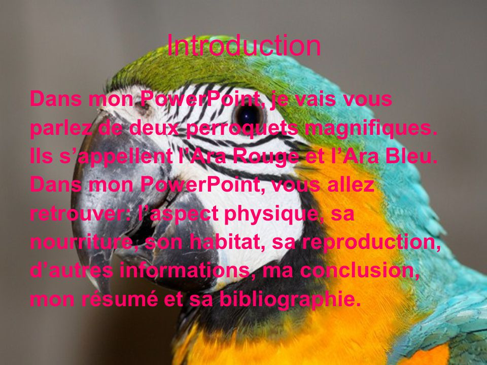 Introduction Dans mon PowerPoint, je vais vous