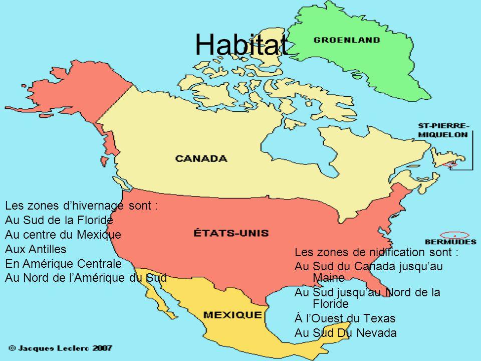 Habitat Les zones d'hivernage sont : Au Sud de la Floride