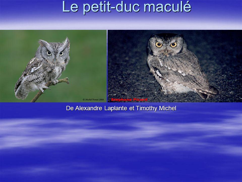 De Alexandre Laplante et Timothy Michel