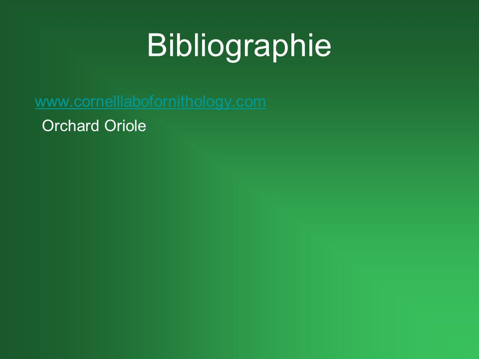 Bibliographie www.cornelllabofornithology.com Orchard Oriole