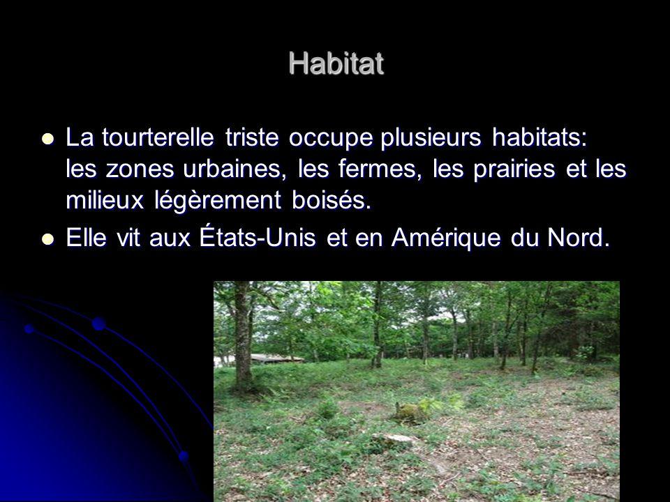 Habitat La tourterelle triste occupe plusieurs habitats: les zones urbaines, les fermes, les prairies et les milieux légèrement boisés.