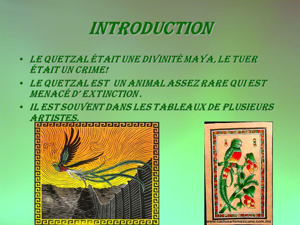 Introduction Le quetzal était une divinité maya, le tuer était un crime! Le quetzal est un animal assez rare qui est menacé d' extinction .