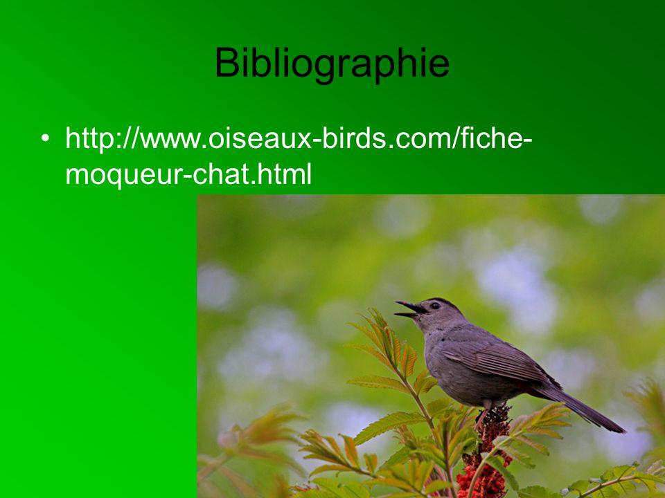 Bibliographie http://www.oiseaux-birds.com/fiche-moqueur-chat.html