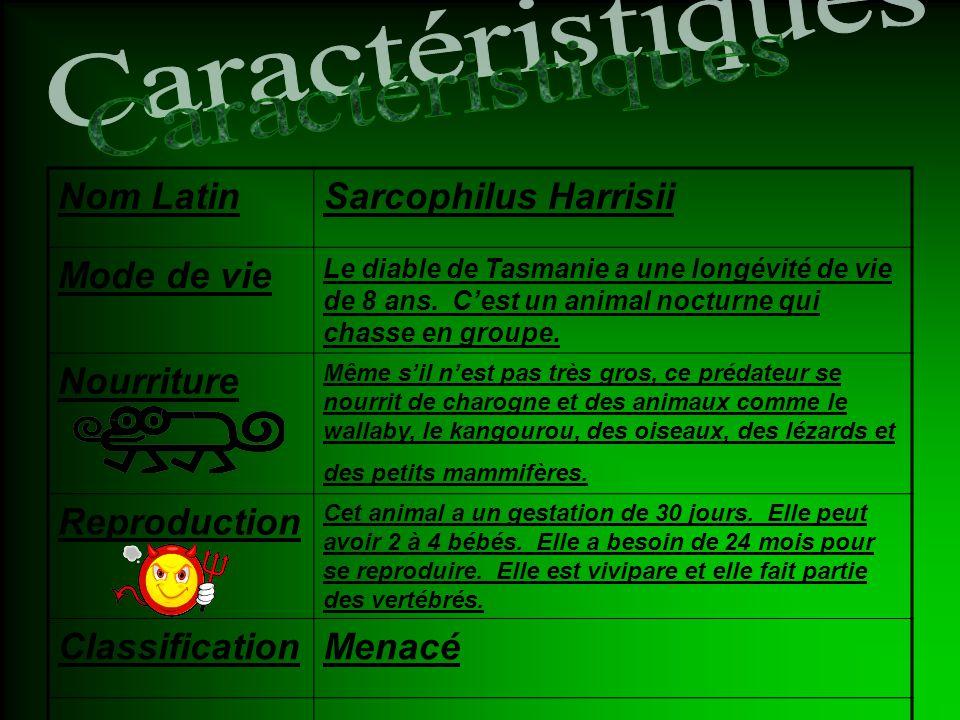 Caractéristiques Nom Latin Sarcophilus Harrisii Mode de vie Nourriture