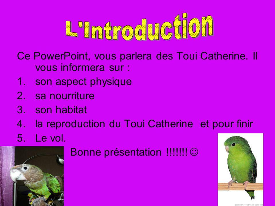 L Introduction Ce PowerPoint, vous parlera des Toui Catherine. Il vous informera sur : son aspect physique.