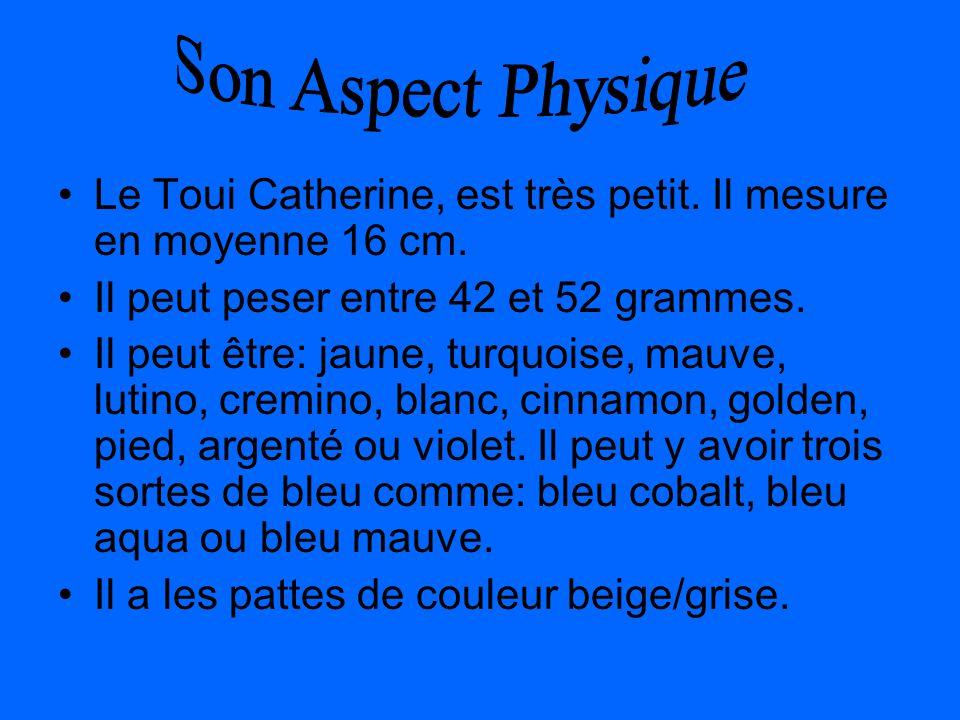 Son Aspect Physique Le Toui Catherine, est très petit. Il mesure en moyenne 16 cm. Il peut peser entre 42 et 52 grammes.