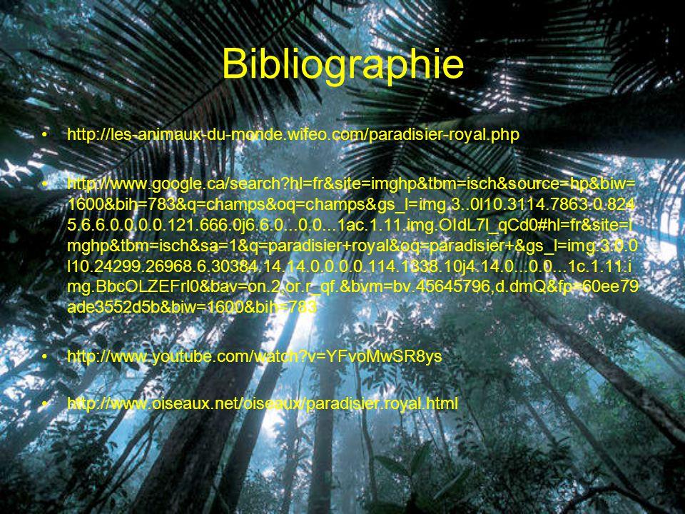 Bibliographie http://les-animaux-du-monde.wifeo.com/paradisier-royal.php.