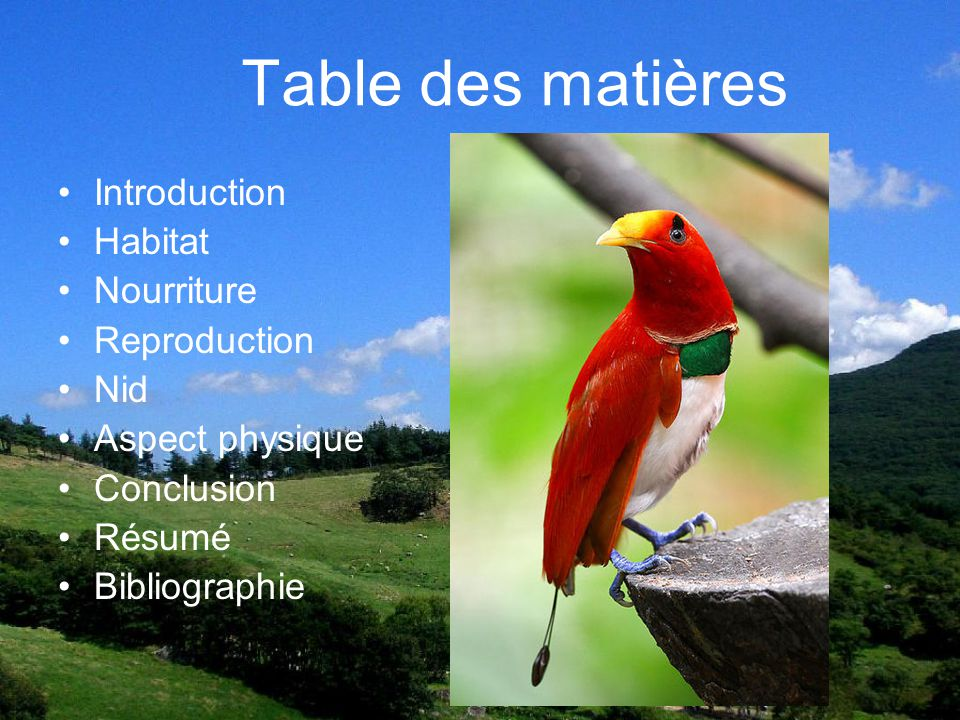Table des matières Introduction Habitat Nourriture Reproduction Nid