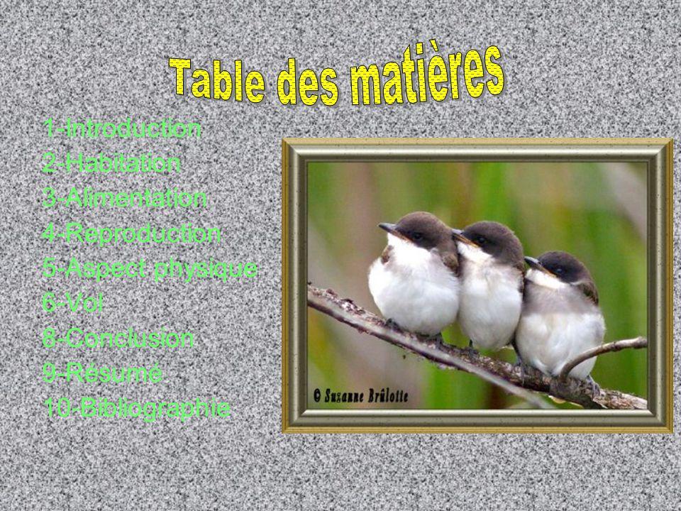 Table des matières 1-Introduction 2-Habitation 3-Alimentation