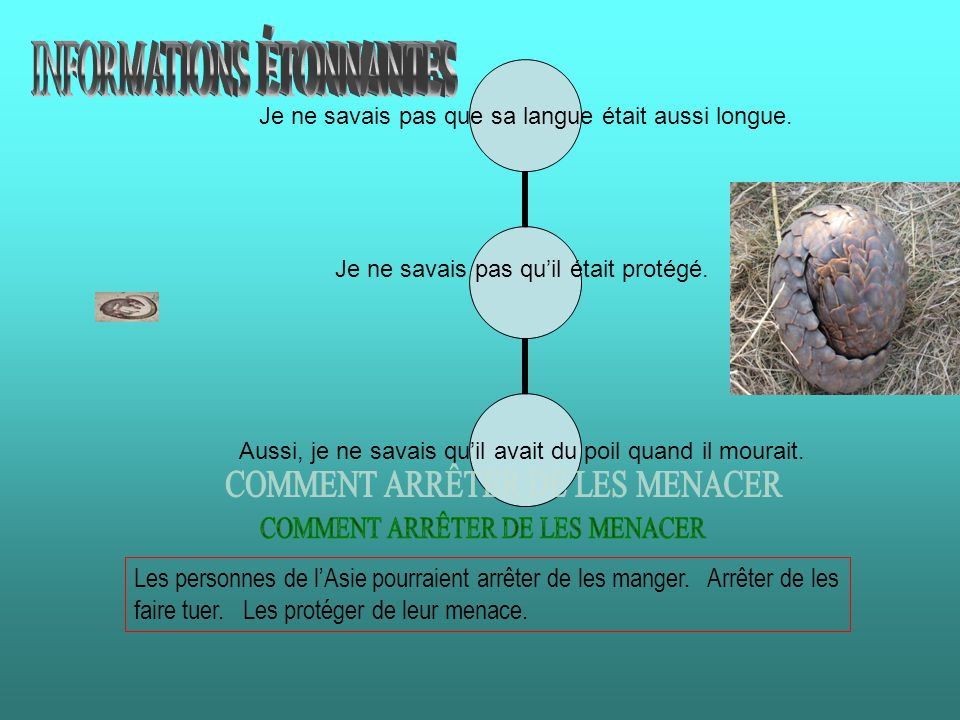 INFORMATIONS ÉTONNANTES