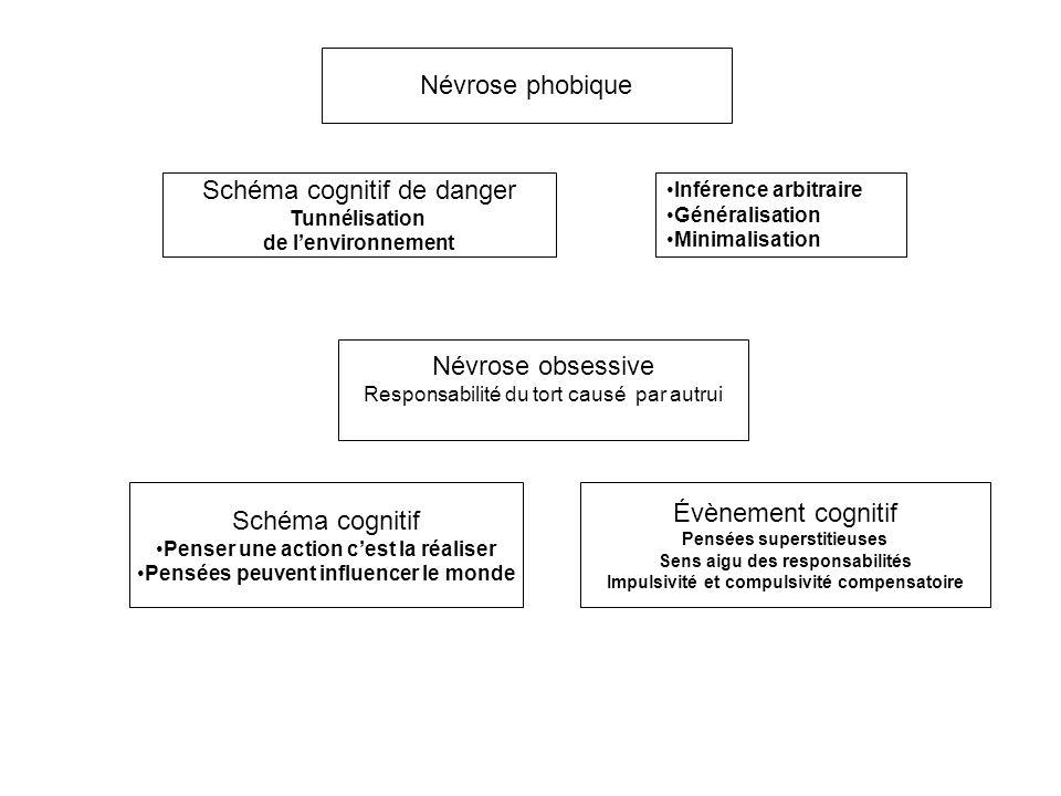 Schéma cognitif de danger
