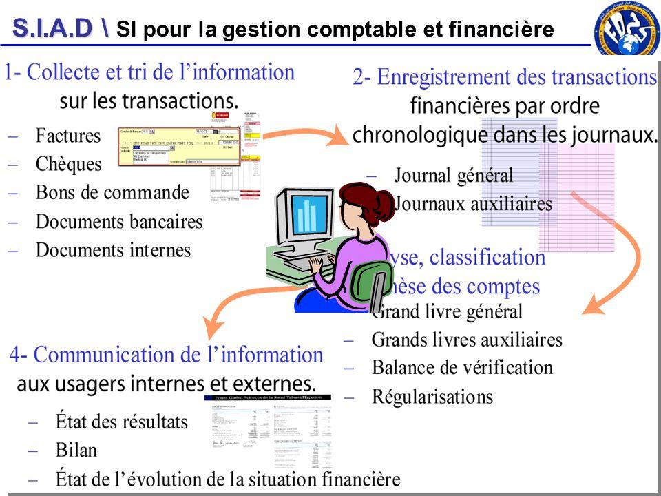 SI pour la gestion comptable et financière