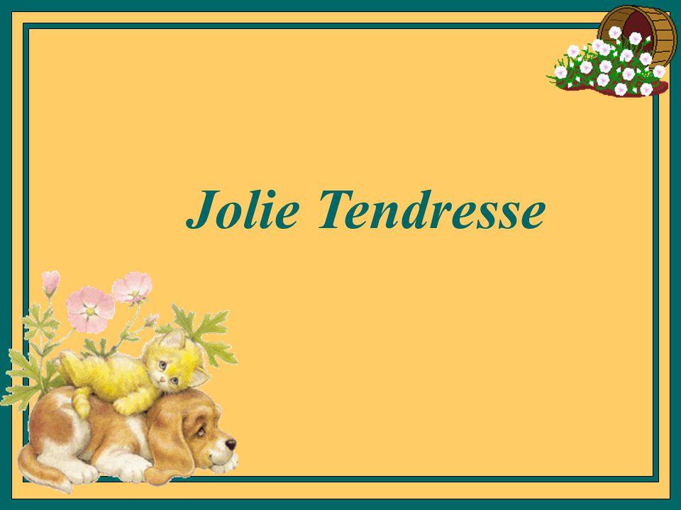 Jolie Tendresse