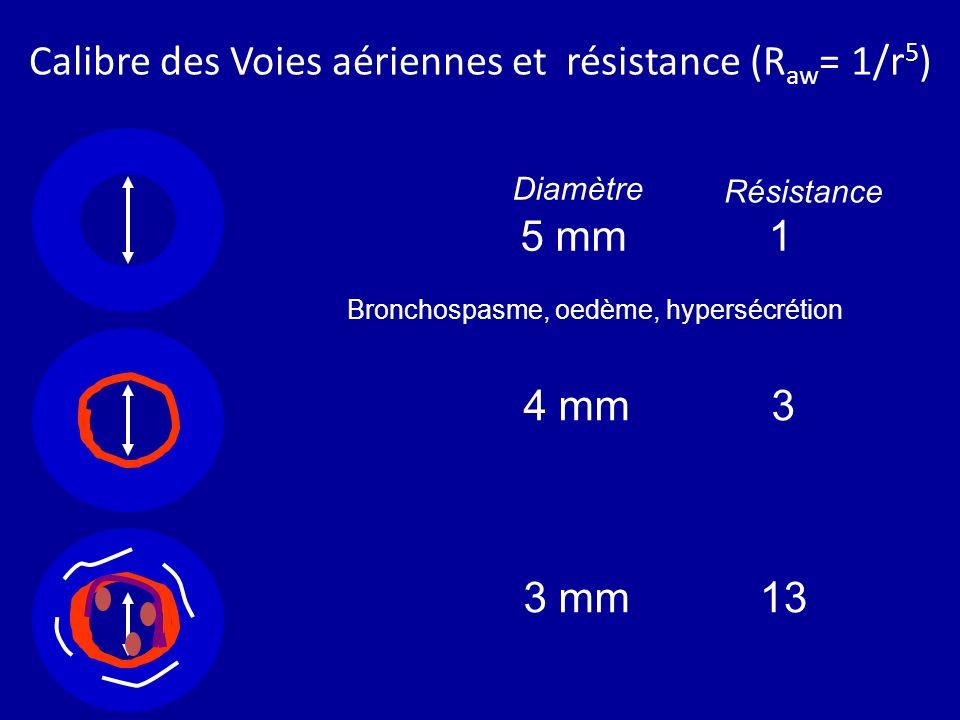Calibre des Voies aériennes et résistance (Raw= 1/r5)