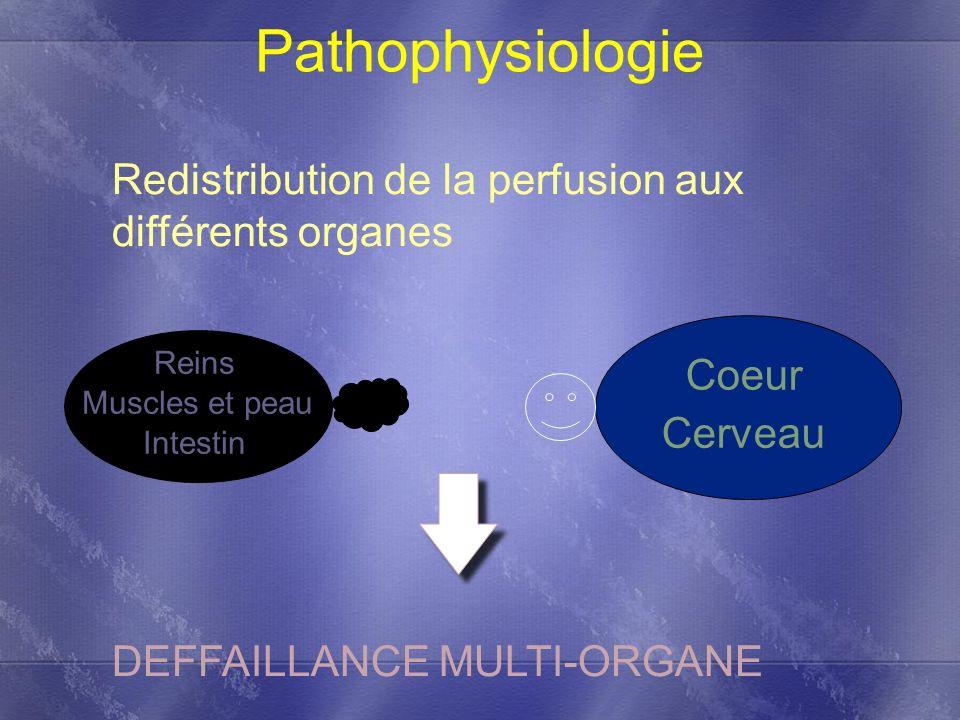 Pathophysiologie Redistribution de la perfusion aux différents organes