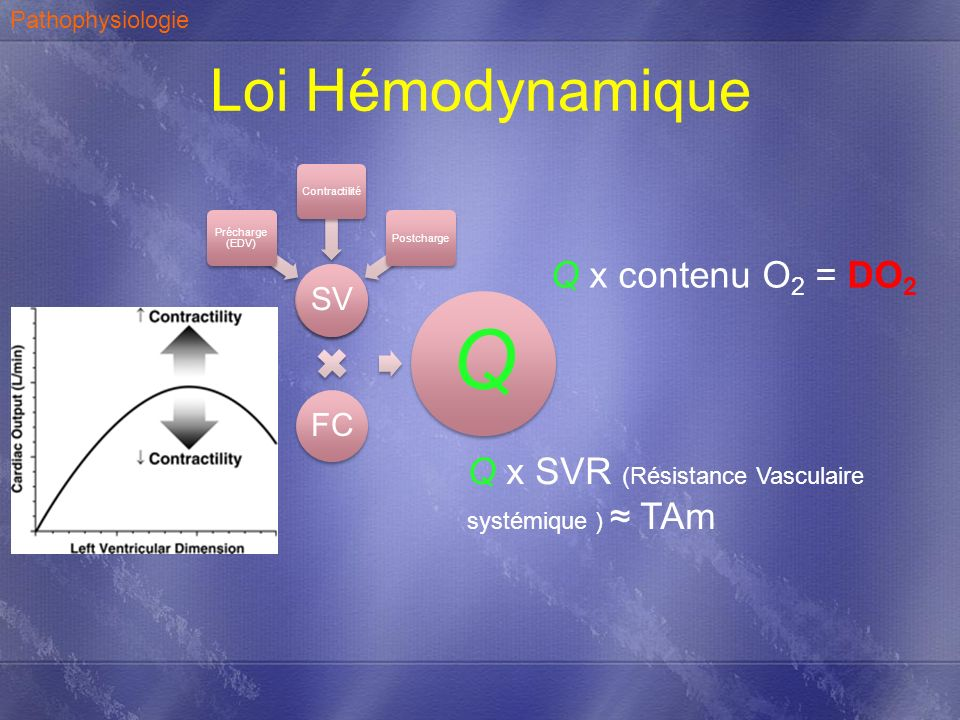 Q Loi Hémodynamique Q x contenu O2 = DO2