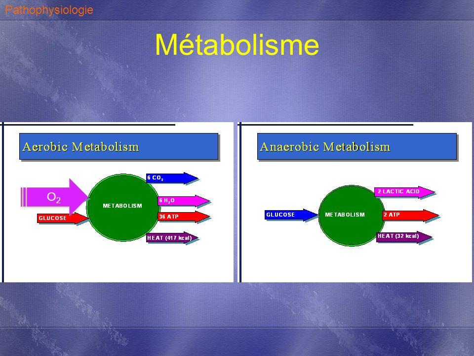 Pathophysiologie Métabolisme O2 Erreur 38 atp