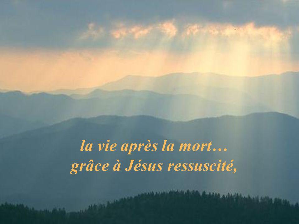 la vie après la mort… grâce à Jésus ressuscité,