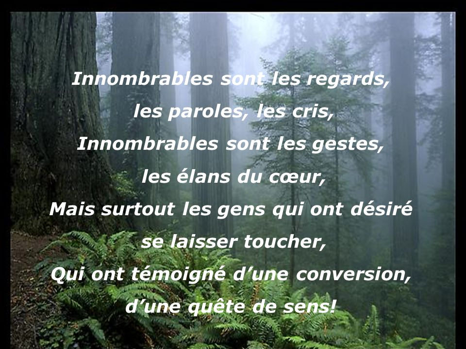 Innombrables sont les regards, les paroles, les cris,