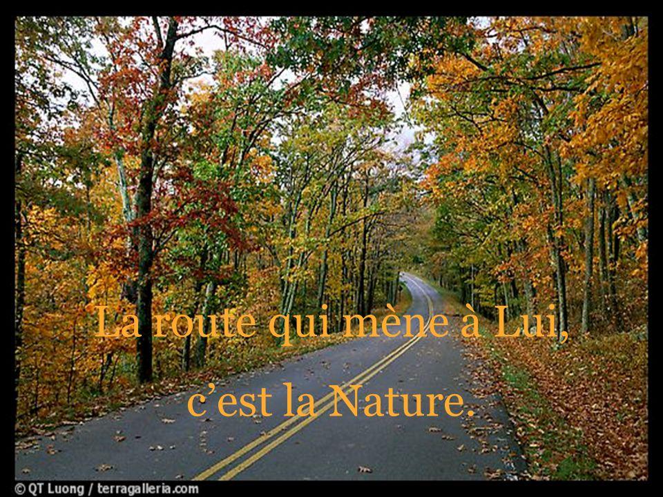 La route qui mène à Lui, c'est la Nature.