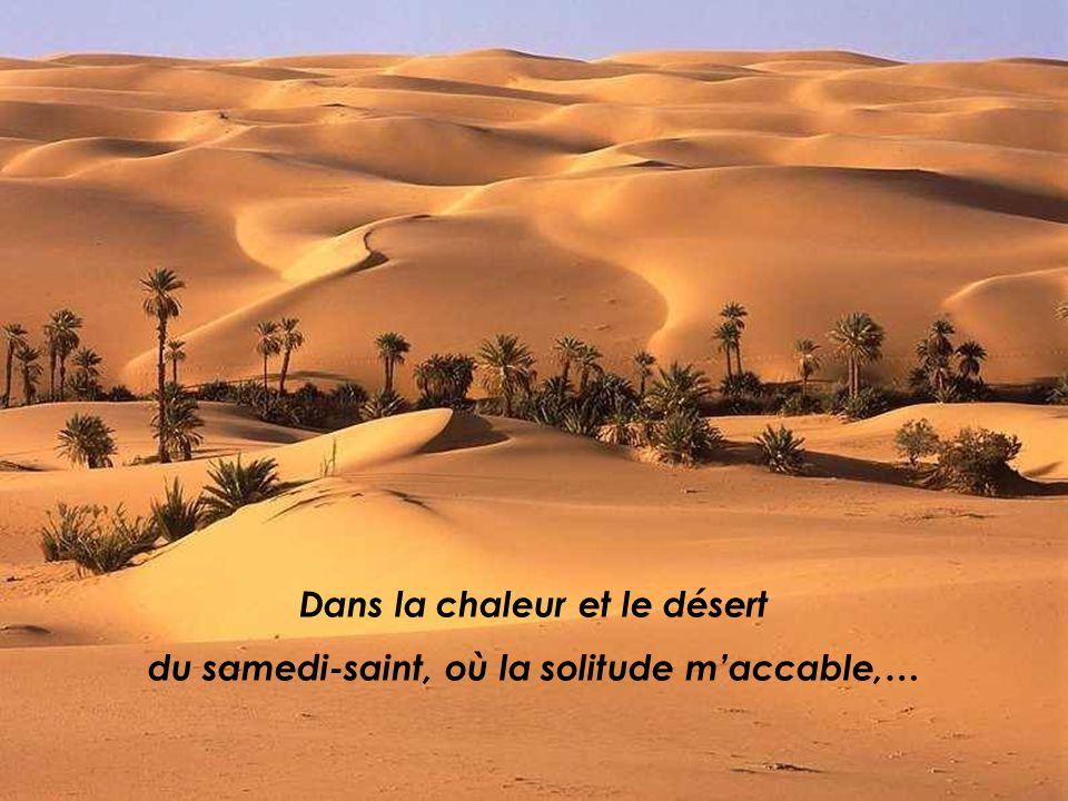 Dans la chaleur et le désert