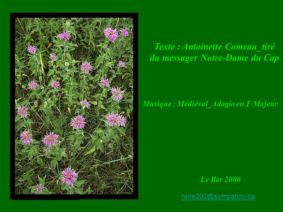 Texte : Antoinette Comeau_tiré du messager Notre-Dame du Cap