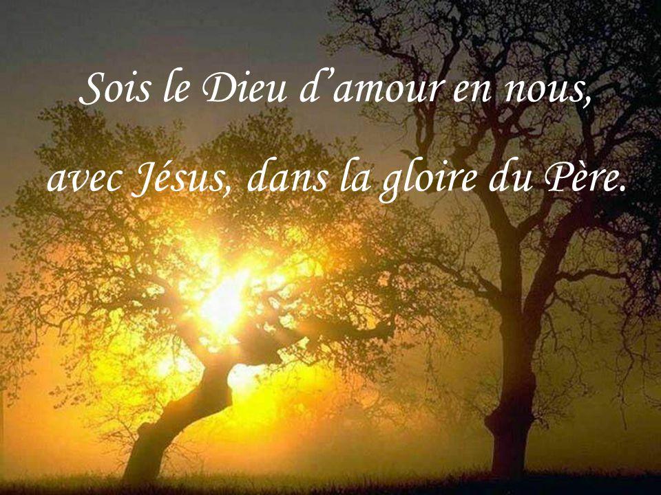 Sois le Dieu d'amour en nous, avec Jésus, dans la gloire du Père.