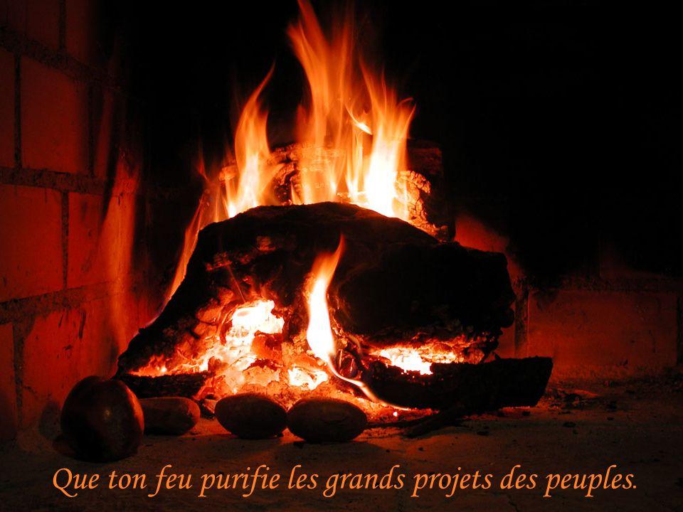 Que ton feu purifie les grands projets des peuples.
