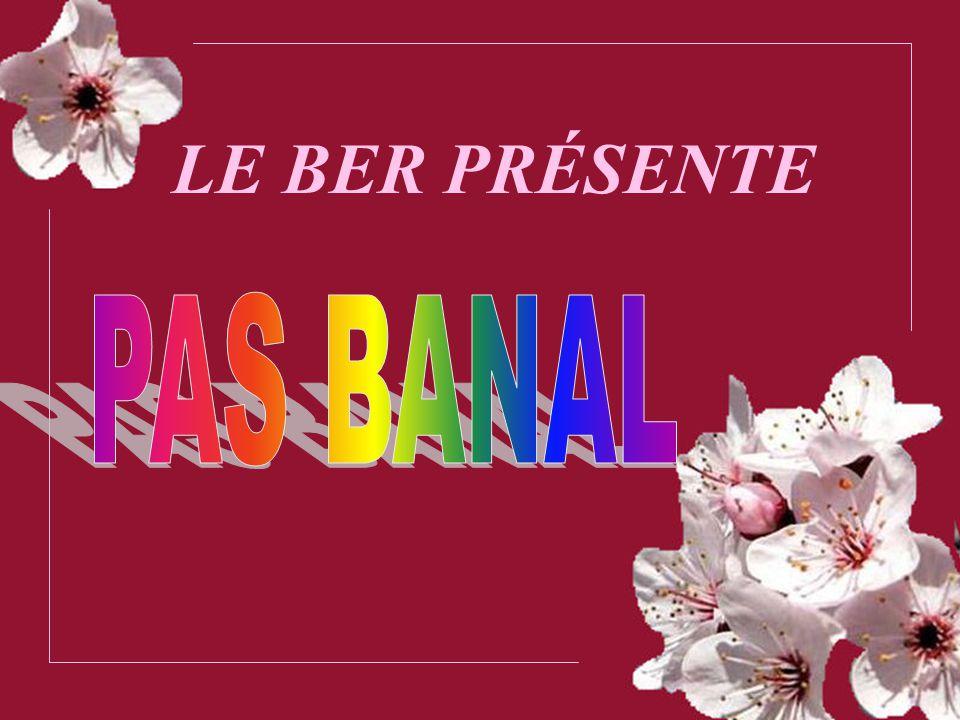 LE BER PRÉSENTE PAS BANAL