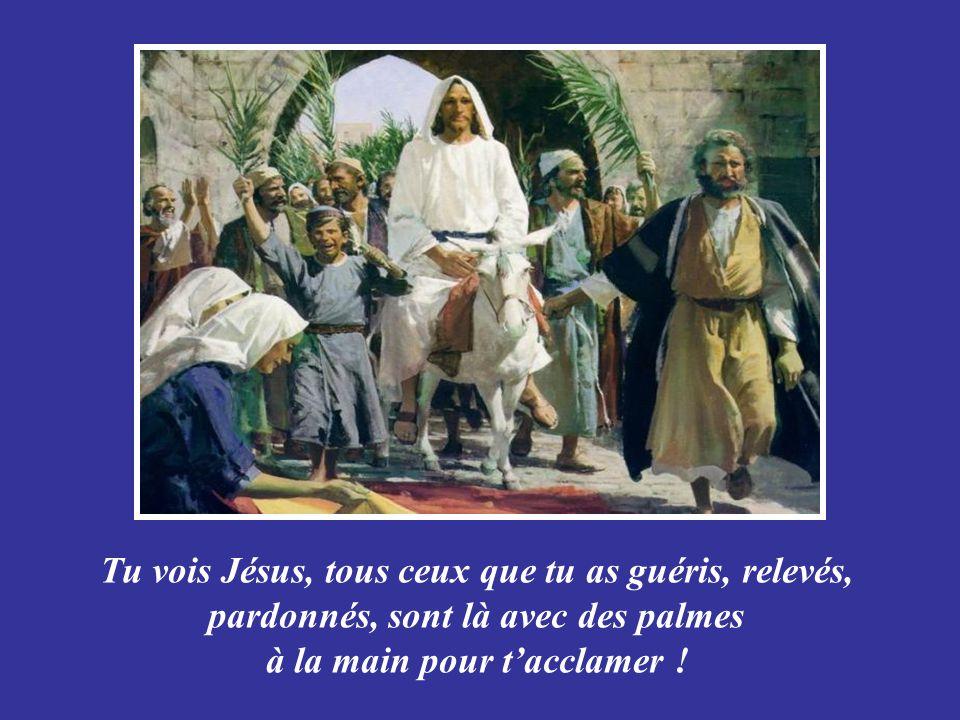 Tu vois Jésus, tous ceux que tu as guéris, relevés, pardonnés, sont là avec des palmes à la main pour t'acclamer !