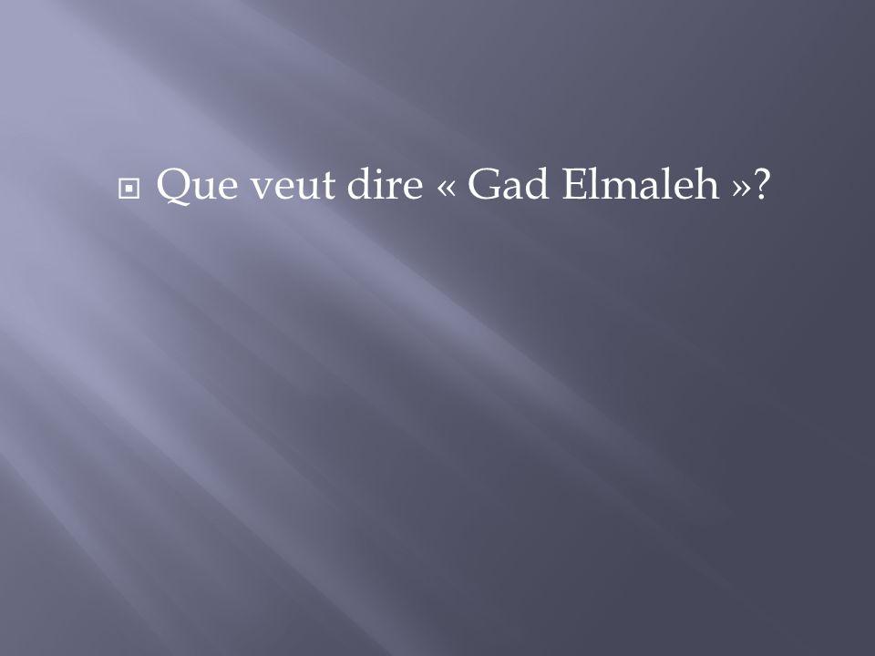 Que veut dire « Gad Elmaleh »