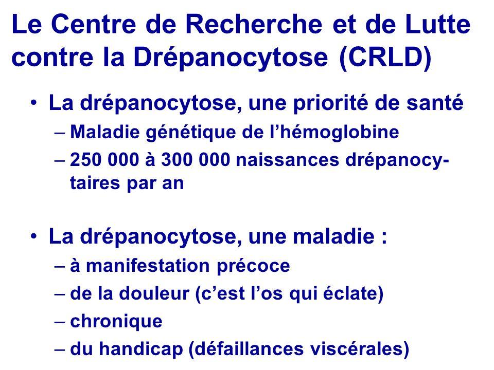 Le Centre de Recherche et de Lutte contre la Drépanocytose (CRLD)