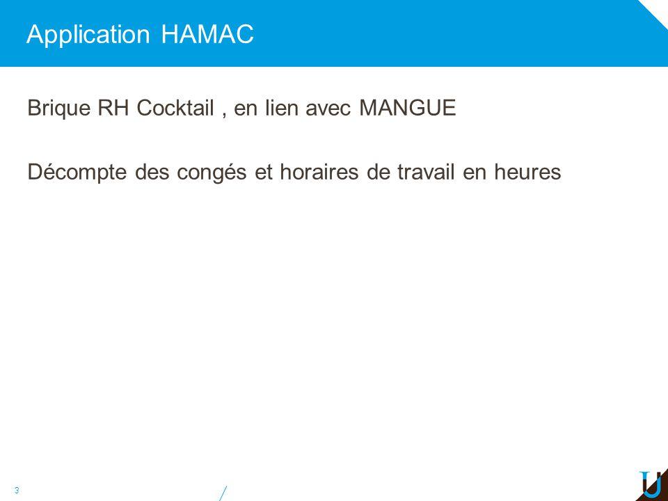 Application HAMAC Brique RH Cocktail , en lien avec MANGUE Décompte des congés et horaires de travail en heures