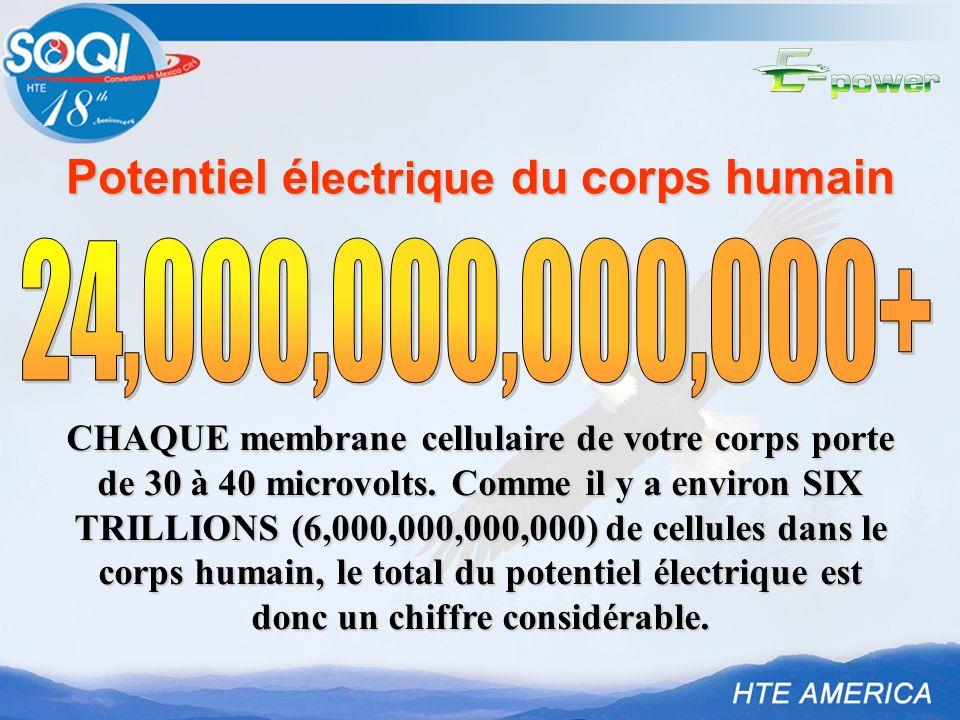 Potentiel électrique du corps humain