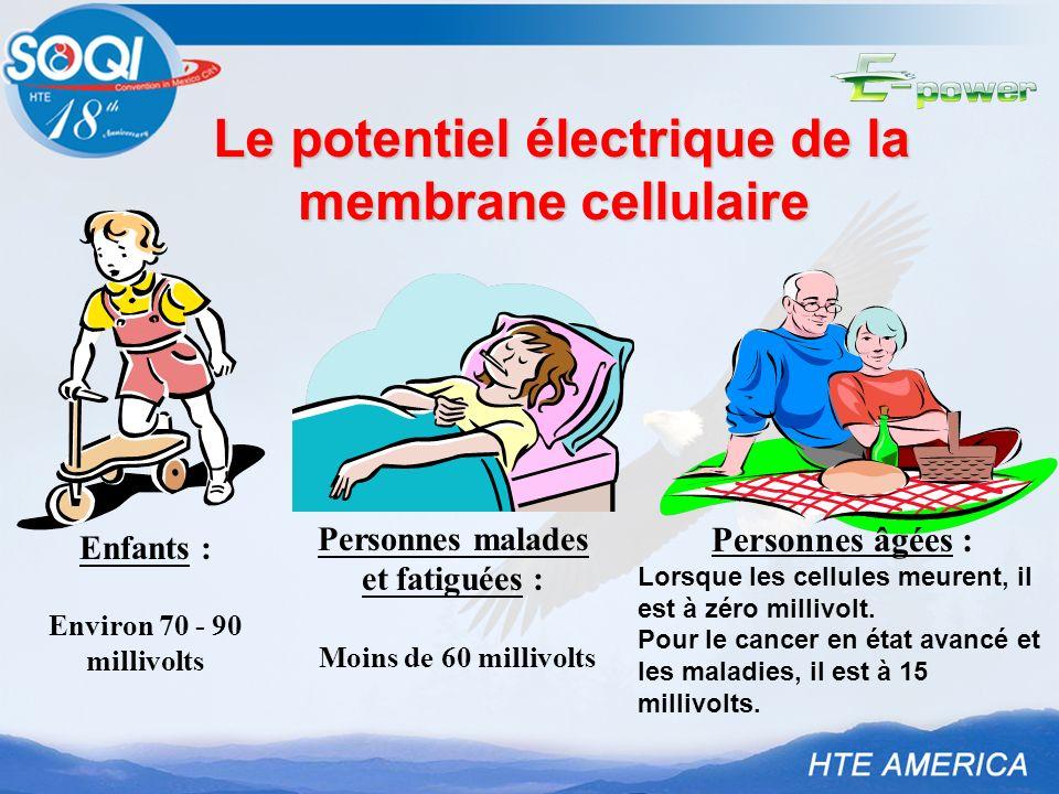 Le potentiel électrique de la membrane cellulaire