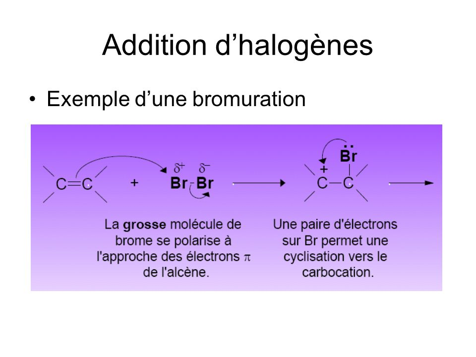 Addition d'halogènes Exemple d'une bromuration