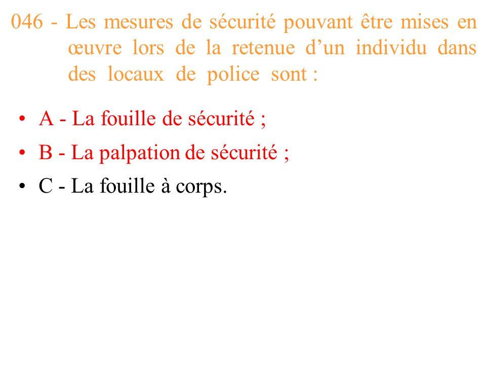 046 - Les mesures de sécurité pouvant être mises en œuvre lors de la retenue d'un individu dans des locaux de police sont :